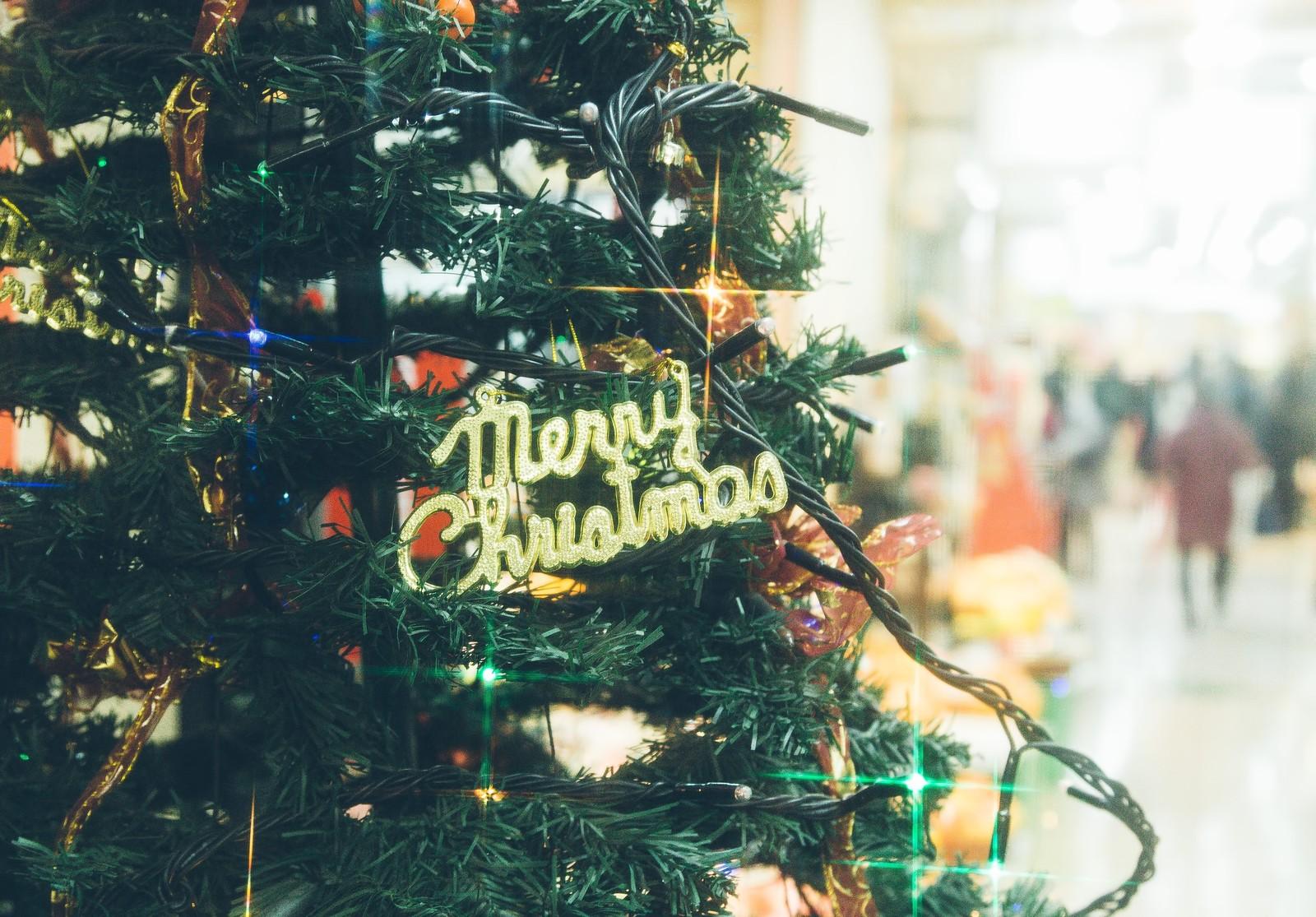 家庭用クリスマスツリーを格安でレンタルするなら・・・ | 役に立つと