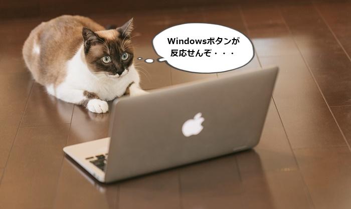 反応 しない キー windows